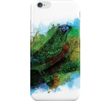 robin, colorful iPhone Case/Skin