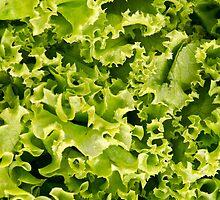 Salad by homydesign