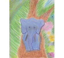 An Elephant Knows Best Photographic Print