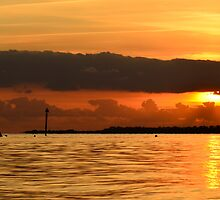 Sunset Rowing by Richard Hepworth