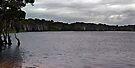 Magical Lake Ainsworth by Odille Esmonde-Morgan