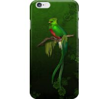 Exotic Quetzal Bird on Green Floral iPhone Case/Skin