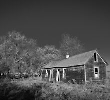 Homestead  by Nate Welk