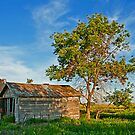 Old Country Shack by Keri Harrish