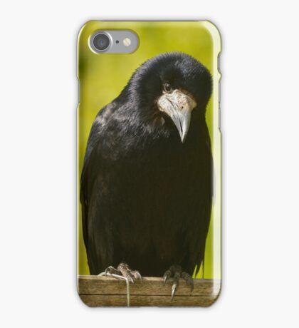 cute rook iPhone Case/Skin