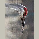 Crane Head by Thomas Murphy