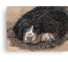 Mud Magnet Canvas Print