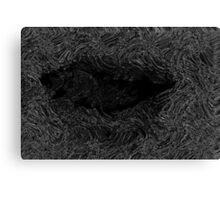 Lips in gray scale Canvas Print