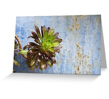 Against Blue  - JUSTART ©  Greeting Card