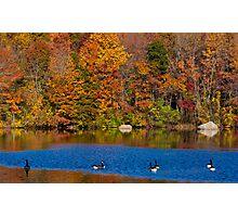 Natures Colorful Autumn  Photographic Print