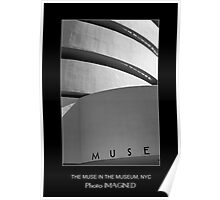 THE MUSE IN THE MUSEUM, NYC, NY  Poster