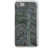Winter Tree Detail iPhone Case/Skin