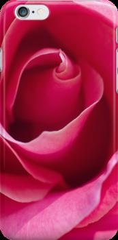 Vivid Pin Rose Heart by jeliza