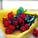 A dozen red roses by Garry Gay
