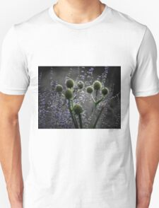 Russian Sage, Rattlesnake Master, Green and Purple T-Shirt