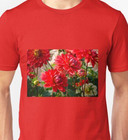Red Dahlias Unisex T-Shirt