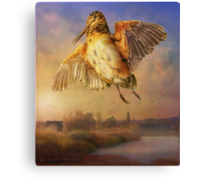 spring flight / american woodcock Canvas Print