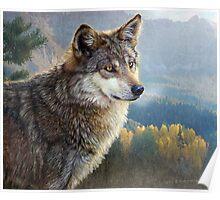 yellowstone wolf Poster