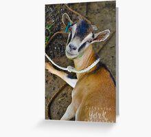 Baaa-a 2 Greeting Card