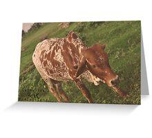Animal 2 Greeting Card