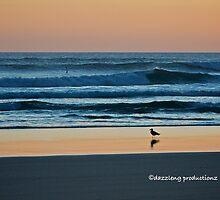 Venus Bay at dusk by dazzleng
