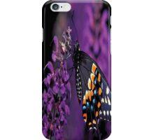 Eastern Black Butterfly iPhone Case/Skin