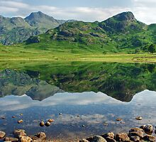 Blea Tarn ..A July Scene.. by Jamie  Green