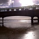 Bournmouth pier  by ShepS