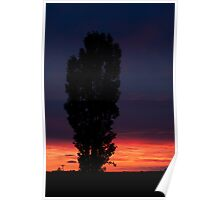 - Sunset over Fynnes Meadow Poster