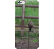 Bird on Fence iPhone Case/Skin