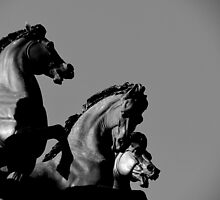 Horses by michele1x2