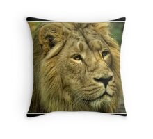 Chester Zoo - 2011 Throw Pillow