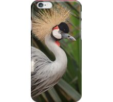Grey Crested Crane iPhone cover iPhone Case/Skin