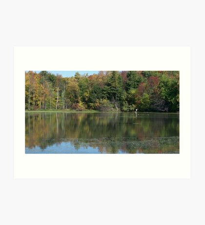 Rural Relections in Autumn Art Print