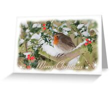 Holly & Robin Christmas Card Greeting Card