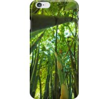 Bamboo Forest iPhone Case/Skin
