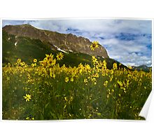 Gothic Mountain And Sunflowers Poster