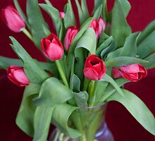 Vase of Tulips by Natalie Kinnear
