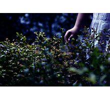 Blue August Photographic Print