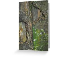The Beauty of Bark Greeting Card