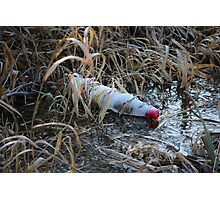 Bottle in Ice Photographic Print