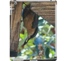 Upside-down nuthatch iPad Case/Skin