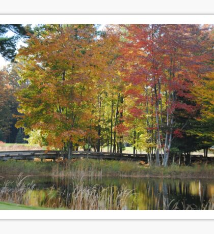 Nature - Fall Colors - 6 Sticker