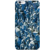 Dry River Rocks iPhone Case/Skin