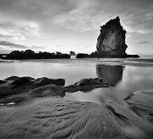 Shag Rock, Christchurch... before the earthquaqe by Tim Edmonds