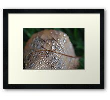 A pious one with a hundred beads on your rosary Framed Print