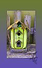 "Rustic ""Private"" Birdhouse by Sandra Foster"