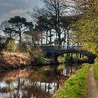 Bridge number 16 by Tom Gomez