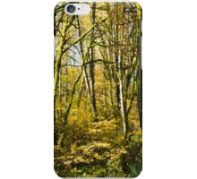 Fall Trees, Washington, USA iPhone Case/Skin