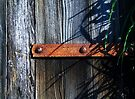 Rusty Barn Hinge  by Marcia Rubin